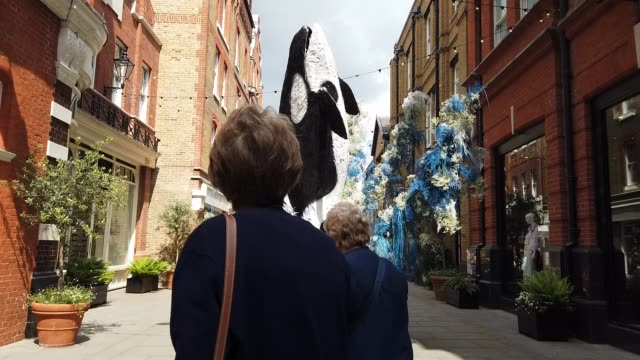 people look at a lifesize floral model of an orca whale near sloane square as businesses unveil this years creations in support of the chelsea flower... - killer whale stock videos & royalty-free footage