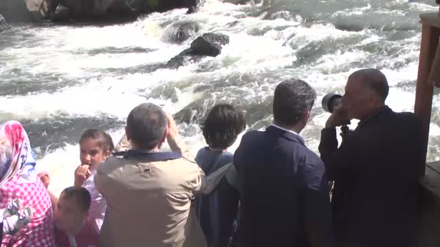 people look on the pearl mullets as they migrate upstream through the tributaries at bendimahi streamlet in van southeastern on turkey on may 30 2016... - mullet fish stock videos & royalty-free footage