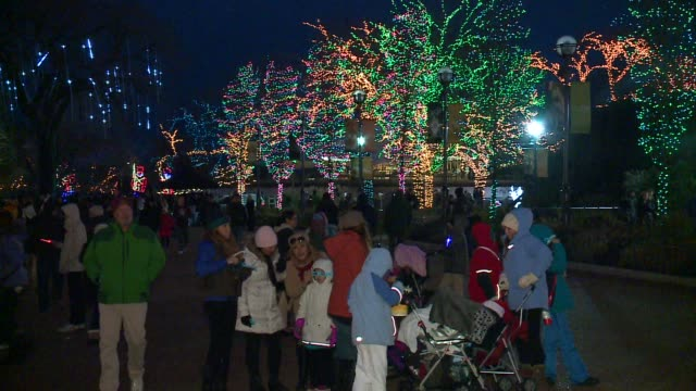 WGN People Looking At The Holiday Light Display At Lincoln Park Zoo in Chicago on November 27 2015