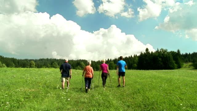 vídeos y material grabado en eventos de stock de grulla de alta definición: gente caminata nórdica en prado - acera
