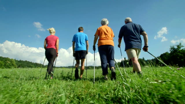 HD: People Nordic Walking Through Meadow