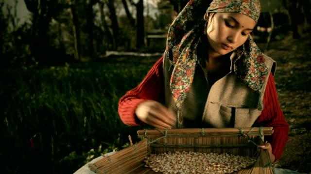 Personas de Himachal Pradesh: Hermosa mujer joven feliz winnowing granos.