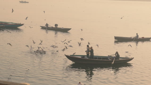 people on boats watch flocks of birds take off on the ganges river at sunrise - slow motion - uttar pradesh stock videos and b-roll footage