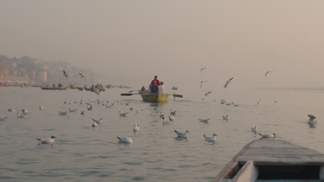 People on boats with birds in the foreground on the Ganges river at sunrise - Slow Motion