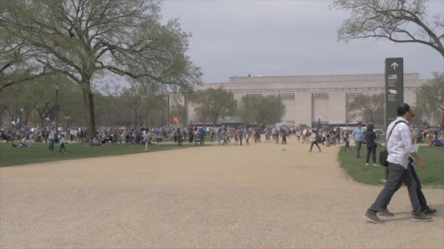 people on national mall and smithsonian national museum of american history, washington dc, united states of america, north america - smithsonian institution video stock e b–roll