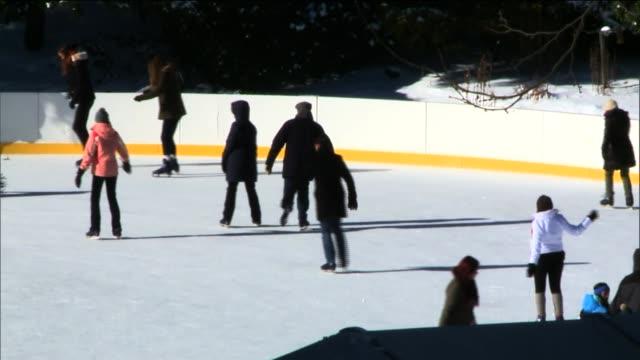people outdoors in central park after the first snow storm of the new year people skating at central park ice rink at central park on january 04 2014... - aquatisches lebewesen stock-videos und b-roll-filmmaterial