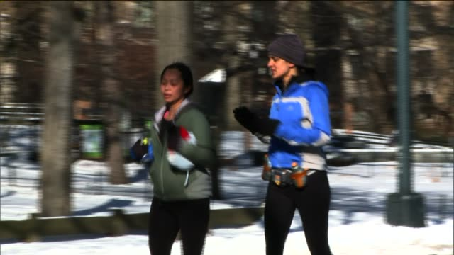 people outdoors in central park after the first snow storm of the new year female joggers in central park at central park on january 04 2014 in new... - aquatisches lebewesen stock-videos und b-roll-filmmaterial