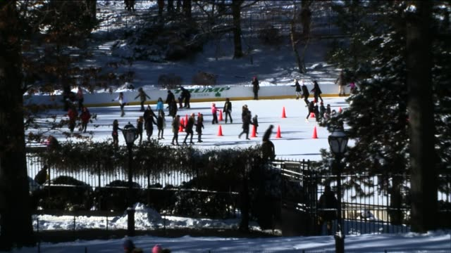 people outdoors in central park after the first snow storm of the new year ice rink at central park at central park on january 04 2014 in new york... - aquatisches lebewesen stock-videos und b-roll-filmmaterial