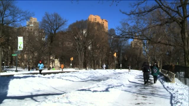 people outdoors in central park after the first snow storm of the new year central park during the winter at central park on january 04 2014 in new... - aquatisches lebewesen stock-videos und b-roll-filmmaterial