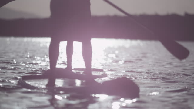 People paddleboard at sunset, close up