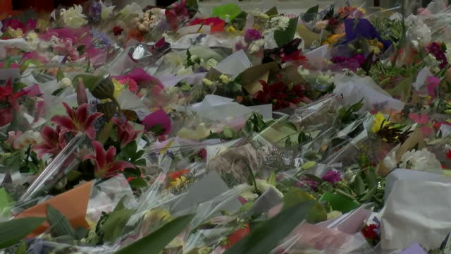 people pay respects for victims held at lindt cafe in sydney siege shows exterior shots of people laying flowers in memory of those who lost their... - bankräuber stock-videos und b-roll-filmmaterial