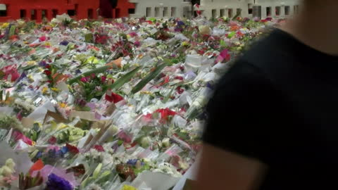 vidéos et rushes de people pay their respects for those lost during the siege. shows exterior shots of the masses of flowers laid in memorial of the victims on december... - braqueur de banque