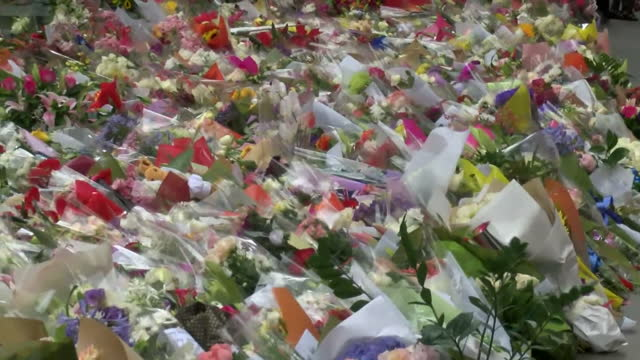 people pay their respects to those who lost their lives during the siege shows exterior shots of the masses of flowers laid in tribute to those who... - bankräuber stock-videos und b-roll-filmmaterial