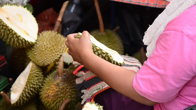 people peel durian - peel plant part stock videos and b-roll footage