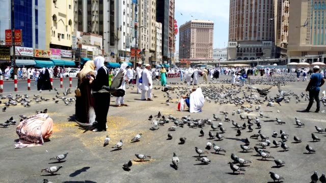 people / pilgrims feeding pigeons in the streets of mecca (makkah) city - pilgrim stock videos & royalty-free footage