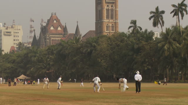 ws people playing cricket in oval maidan / mumbai, india - cricket video stock e b–roll
