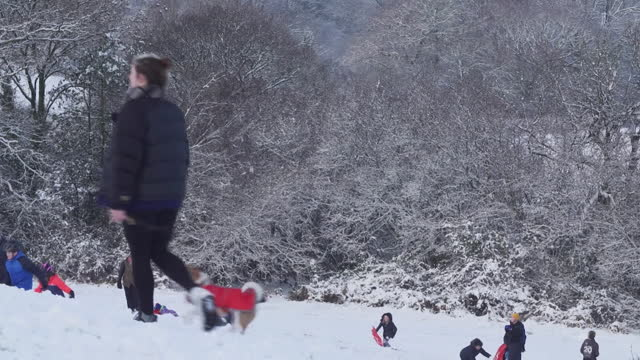 people playing in snow on hill in surrey - hill stock videos & royalty-free footage