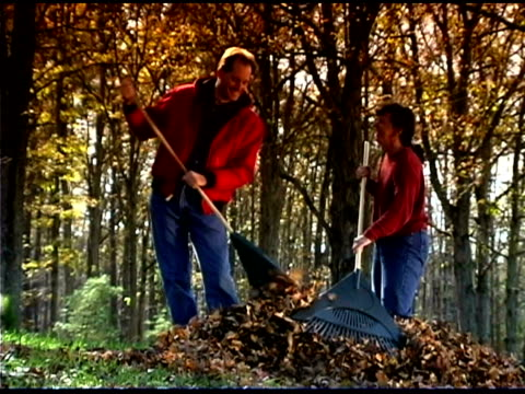 stockvideo's en b-roll-footage met people raking - mid volwassen koppel