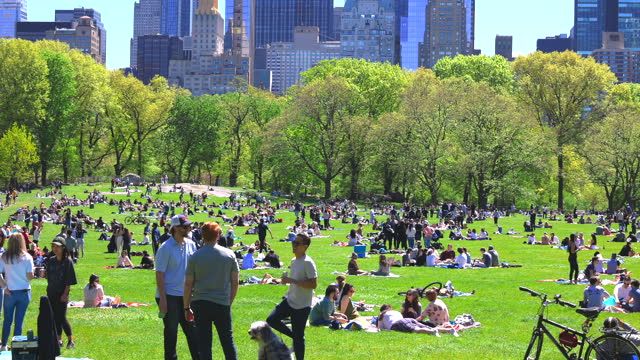 people relax and enjoy time on the sheep meadow on saturday afternoon amidst the pandemic of covid-19 in nyc. - manhattan new york city stock videos & royalty-free footage