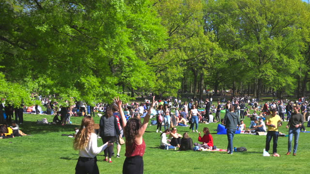 people relax and enjoy time on the sheep meadow on saturday afternoon amidst the pandemic of covid-19 in nyc. - tree trunk stock videos & royalty-free footage