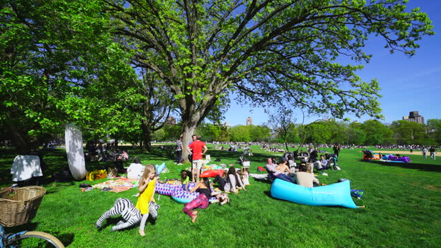 people relax and enjoy time with friends on the great lawn of central park in new york city, usa on may 1, 2021. visitor numbers at the park seem to... - office block exterior stock videos & royalty-free footage