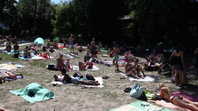 people relax at schlachtensee lake during the coronavirus crisis on august 01 2020 in berlin - grooming product stock videos & royalty-free footage