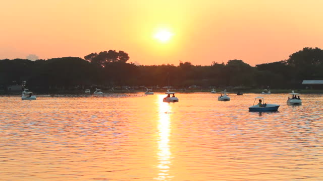 people relax with pedal boat in the lake at evening - pedal boat stock videos and b-roll footage