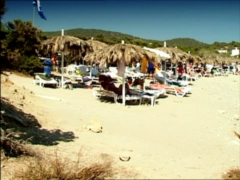 pan people relaxing at beach, ibiza, spain - fan palm tree stock videos & royalty-free footage