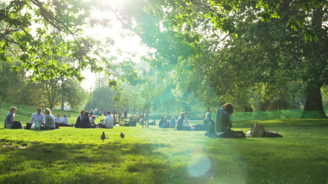 People relaxing in St James's Park on a summer evening.