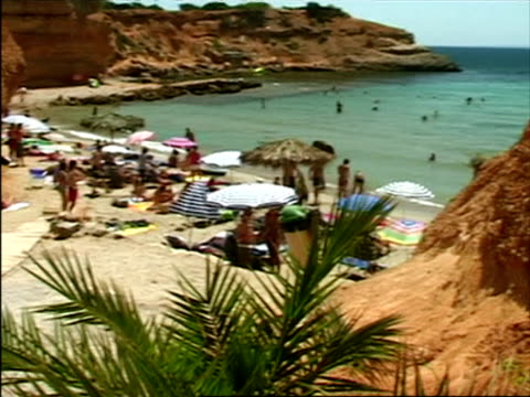 stockvideo's en b-roll-footage met ms, pan, ha, people relaxing on beach, ibiza, spain - waaierpalm
