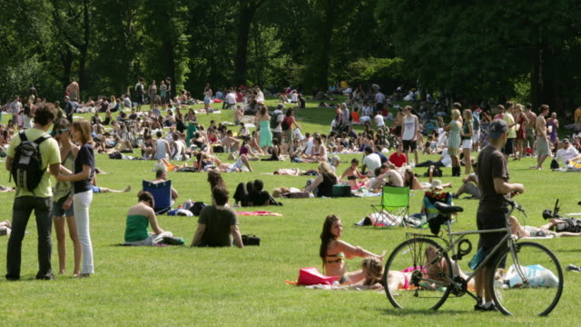 t/l ms people relaxing on lawn in central park, new york city, new york, usa - central park manhattan stock videos & royalty-free footage