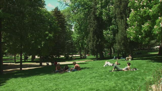 ws pan people relaxing on lawn in retiro park, madrid, spain - ピクニック点の映像素材/bロール