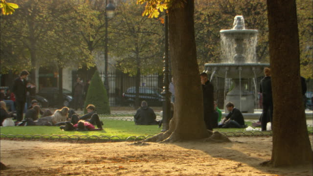 WS People relaxing on lawn with fountain in park / Paris, France