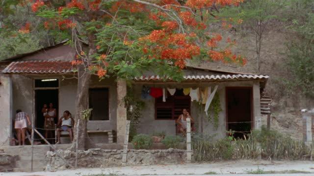 ms, people relaxing on porch of country house, flame tree in foreground, santiago de cuba, cuba  - sn�� bildbanksvideor och videomaterial från bakom kulisserna
