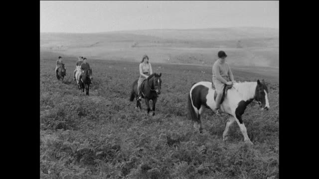 montage people ride horses on the countryside moors of a u.k. national park / uk - trail ride stock videos and b-roll footage