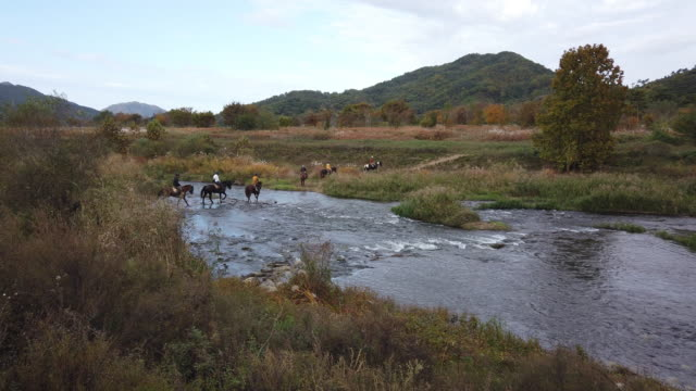 vidéos et rushes de people riding horses at namhan river / chungju-si, chungcheongbuk-do, south korea - équitation de loisir