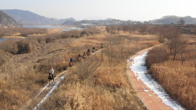 people riding horses at namhan river / chungju-si, chungcheongbuk-do, south korea - recreational horse riding stock videos & royalty-free footage