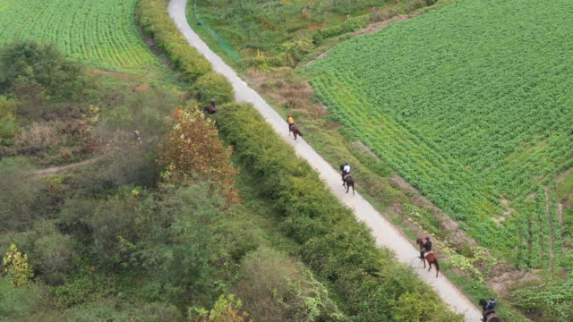stockvideo's en b-roll-footage met people riding horses / chungju-si, chungcheongbuk-do, south korea - recreatief paardrijden