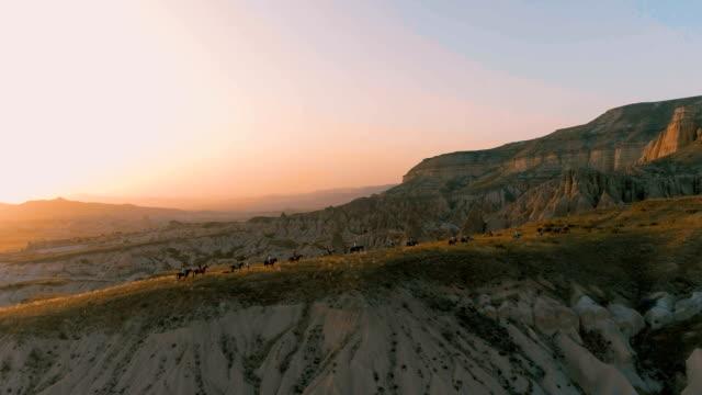 vídeos de stock, filmes e b-roll de pessoas a cavalgar pela floresta ao pôr do sol - kranj
