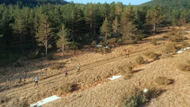 AERIAL People running in the mountains on a trail along a forest in the morning sun