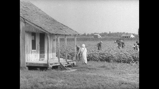 people sharecroppers tenant farmers laborers working in field caucasian & african-american . vs int & ext poverty homes. landlords landlord talking... - sharecropper stock videos & royalty-free footage
