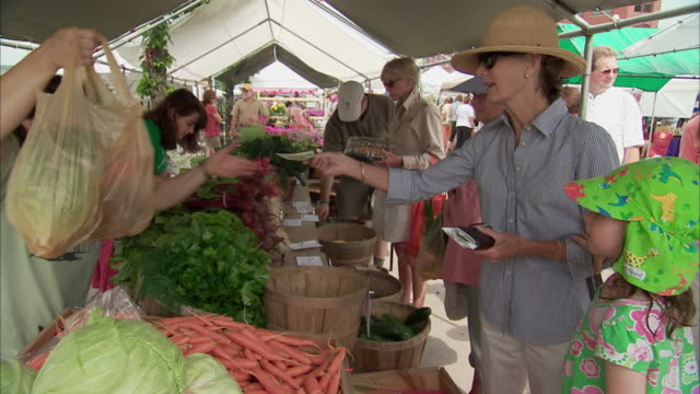 ms people shopping at farmers market stall / rutland, vermont, usa - sonnenhut stock-videos und b-roll-filmmaterial