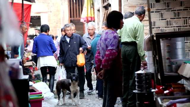 fuzhou, china - may 29, 2017: people shopping in the local market preparing for the the dragon boat festival in the old town. - large group of animals点の映像素材/bロール