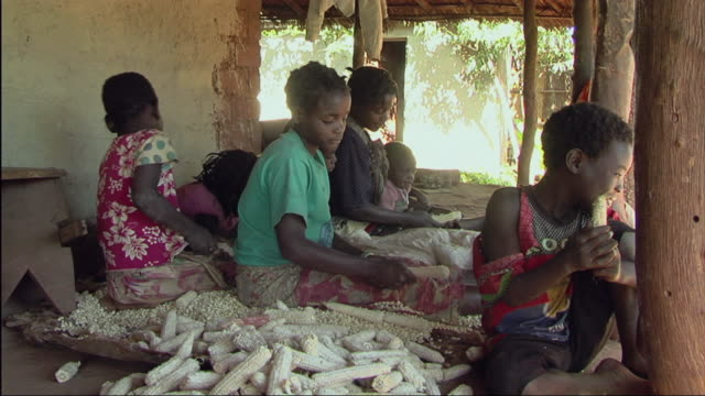 ms people shucking corn / mozambique - mozambique stock videos & royalty-free footage