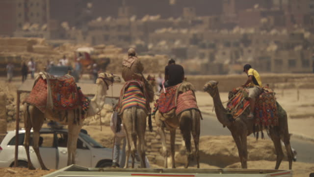 people sit on camels in giza, egypt. - cairo stock videos & royalty-free footage