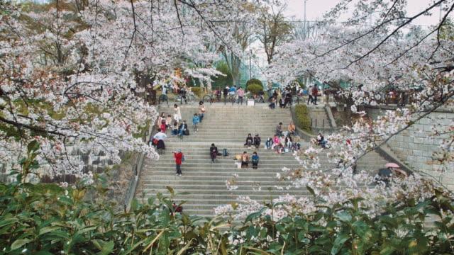 WS, People sitting on stairs near the Yamazaki river, Nagoya