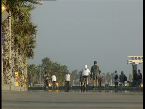 People skating cycling and jogging along Venice Beach promenade with palm trees in background