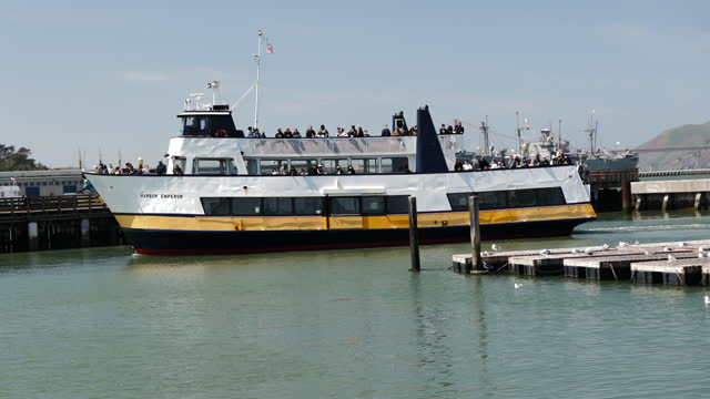 people spending time on pier 39 as california plans to fully reopen its economy, in san francisco, ca, u.s., on thursday, april 8, 2021. california... - sea lion stock videos & royalty-free footage