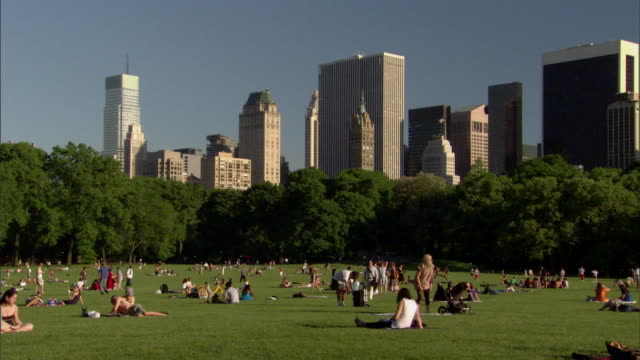 ws pan people spreading picnic blankets and relaxing on green grass / new york, new york, usa  - sheep meadow central park stock videos and b-roll footage