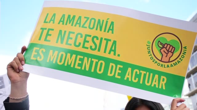 people stage 's.o.s amazonia' protest in response to amazon rainforest fires called by fridays for future at brazilian embassy on august 23, 2019 in... - 2019 stock videos & royalty-free footage